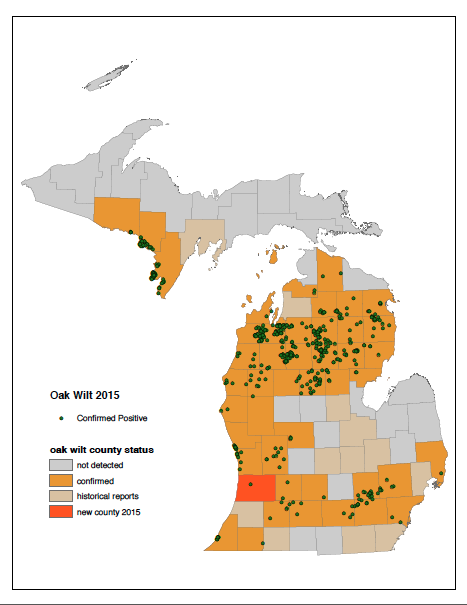 Credit Courtesy of Michigan's Department of National Resources